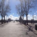 <b>#Toulouse parecía calma por la mañana, pero a medida que el día pasaba las calles se llenaban de gen...</b>