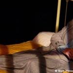 <b>Souriez s'il vous plait, cette semaine au Théâtre du Pavé</b>