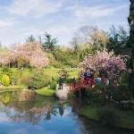 <b>#Toulouse #villerosetoulouse #jardinjaponais #ByToulouse #visiteztoulouse #sotoulouse #ig_france #to...</b>