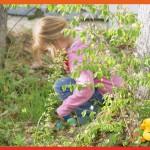 <b>Pâques, chasse aux oeufs : à Animaparc ! Jusqu'au 17 avril :  http://bit.ly/2ncHUum #Toulouse #visi...</b>
