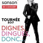 <b>Véronique Sanson en concert en novembre 2017</b>