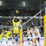<b>Spacer's Toulouse Volley : Une finale pour l'histoire</b>