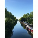 <b>Canal du Midi. #Toulouse #VisitezToulousepic.twitter.com/GWV1AXlary</b>
