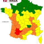 <b>Pollens : vigilance à Toulouse, une partie du Sud-Ouest de la France en alerte rouge</b>