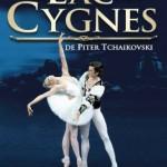 <b>Le Lac des Cygnes ce soir à Toulouse</b>