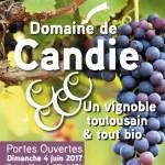 <b>Aujourd'hui, ce sont les portes-ouvertes au domaine de Candie :  http://bit.ly/2sm12K1 #Toulouse #v...</b>