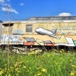 <b>Un peu de #streetart toulousain pour mettre des couleurs dans cette grisaille du jour ?pic.twitter.c...</b>