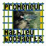 <b>Mathieu Boogaerts de retour au Rex de Toulouse en novembre 2017</b>