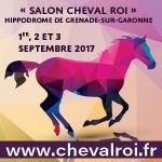 <b>Salon Cheval roi à l'Hippordrome de Grenade en septembre !</b>