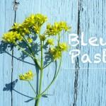 <b>Mercredi, découvrez tout sur le bleu pastel, base pour teinture et cosmétiques :  http://bit.ly/2wIg...</b>