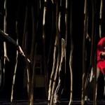 <b>Cette semaine, Robin des bois au Théâtre du Grand Rond</b>