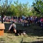 <b>La Fête de la Nature et de l'Agriculture ce dimanche à Ramonville</b>