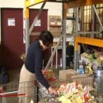 <b>La banque alimentaire de Toulouse recherche des bénévoles</b>