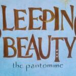 <b>Sleeping Beauty • The Secret Panto Society</b>