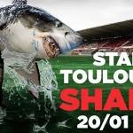 <b>C&#039;est l&#039;heure ! Planifiez votre week-end avec votre agenda touristique à #Toulouse :  http...</b>