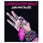 <b>Carpenter Brut en live en mars 2018 à Toulouse</b>