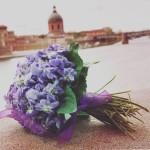<b>La fête de la violette continue ce dimanche : jetez un coup d'oeil à notre tableau @PinterestFR «Ul...</b>