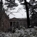 <b>Après 2 jours à nous faire narguer par les parisiens, la neige arrive à #Toulouse @Toulouse @CrtOcci...</b>