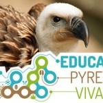 <b>Toute la journée, apprenez à mieux connaître les vautours au @museum #Toulouse avec un spécialiste d...</b>