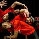 <b>Du breakdance sur le thème des rapaces ! Aujourd'hui à 14h, au @museumtoulouse :  http://bit.ly/2Bx7...</b>