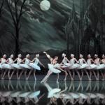 <b>Le Lac des Cygnes par le Saint Petersbourg Ballet à Toulouse !</b>