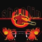 <b>Les Moines de Shaolin ce dimanche à Toulouse !</b>