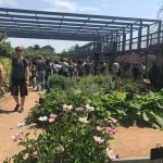 <b>Réveil des jardins du Muséum à Borderouge avec @Rio_Loco ! #visiteztoulouse #Toulousepic.twitter.com...</b>