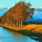 <b>Laurent Adnet : «Il faut agir pour préserver le canal du Midi»</b>