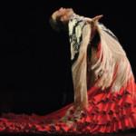 <b>&gt; Événement flamenco</b>