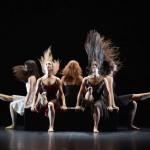 <b>Des Moines du Shaolin au Ballet Preljocaj, une saison chorégraphique « qui envoie du bois »</b>