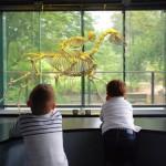 <b>Rappel : aujourd'hui les musées sont gratuits ! #Toulouse #visiteztoulouse   http://bit.ly/2LKuNwQp...</b>