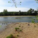 <b>Gestion de l'eau : Jean-Luc Moudenc fait barrage au débat de la régie et renvoie sur des questions t...</b>
