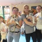 <b>A Mortagne-au-Perche, les chiens de la MFR tiennent compagnie aux résidents du Val-Fleuri</b>