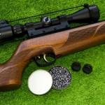 <b>Toulouse : des adolescents de 13 et 14 ans arrêtés pour des vols de fusils et de carabines</b>