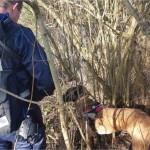 <b>Près de Nemours. Une femme disparue retrouvée grâce à la chienne Fidjie</b>
