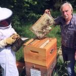 <b>Les défenseurs de l&#039;abeille noire auront leur siège social dans le Perche</b>