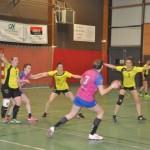 <b>Coupe de France de handball : le grand jour des joueuses de Nogent-le-Rotrou</b>