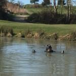 <b>Le boulot de Thibault ? Repêcher les balles dans les étangs des golfs de France</b>