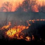 <b>Saint-Flour. La toiture d&#039;une maison prend feu rue de la Frauze</b>