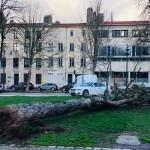 <b>Météo : avis de vents violents sur la Lorraine ce mardi, des rafales jusqu&#039;à 100km/h</b>
