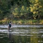 <b>Dans le Calvados, plus de 8 500 pêcheurs se préparent à l'ouverture de la pêche à la ligne</b>