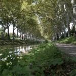 <b>Jeudi, #visiteztoulouse et le quartier du Bazacle et des amidonniers :  http://bit.ly/1ZNpjkN #Toul...</b>