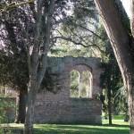 <b>Jardin des Plantes de Toulouse #VisitezToulousepic.twitter.com/EJNCt5gE2q</b>
