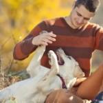 <b>Toulouse, deuxième meilleure ville de France pour vivre avec son chien</b>