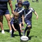 <b>Entraînements ouverts à tous à l'école de rugby du TO</b>