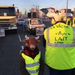 <b>Blocage des Gilets jaunes : les points noirs de la circulation autour de Toulouse</b>