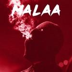 <b>Malaa et son Illegal Tour à Toulouse en février 2019</b>