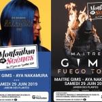 <b>Les premiers noms pour Montauban en Scènes 2019 !</b>