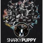 <b>Snarky Puppy en concert à Toulouse le 19 novembre 2019</b>