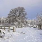 <b>La neige tombe en masse dans les Pyrénées</b>